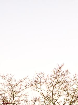 …Sobre el horizonte…